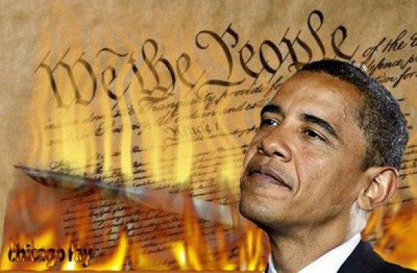 obama-burns-constitution-