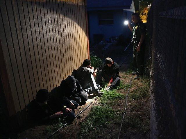 illegals-in-yard