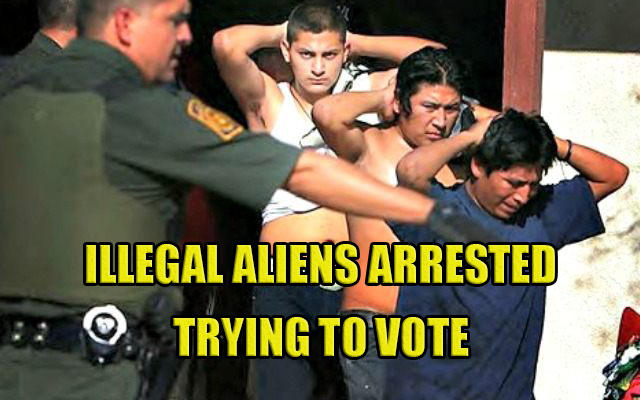 illegal-vote-640x400