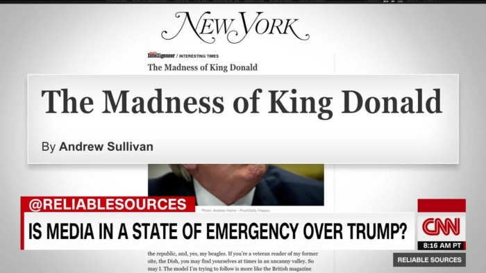 madness-of-king-donald