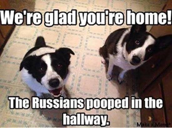 russians-pooped-in-hallway