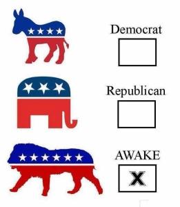 politicains-awake