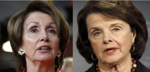Image result for Nancy and Dianne Feinstein